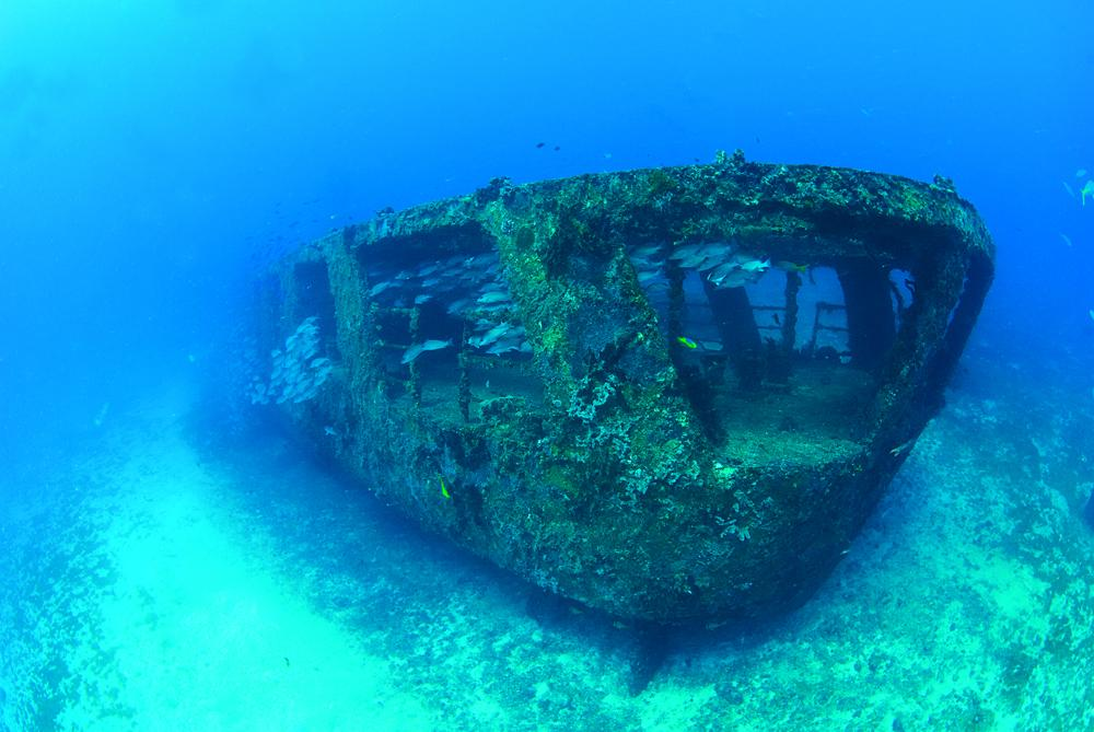 Top Sites for Diving in Cancun