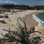 Best Cabo Landmarks