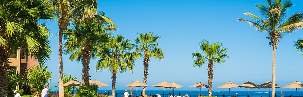 Cabo San Lucas Dream Vacations